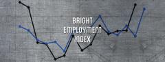 Bright Employment Index